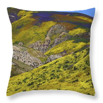 Wildflowers Galore At Carrizo Plain National Monument In California Throw Pillow