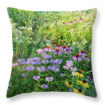 Wildflowers In Moraine Hills State Park Throw Pillow