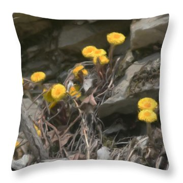 Wildflowers In Rocks Throw Pillow