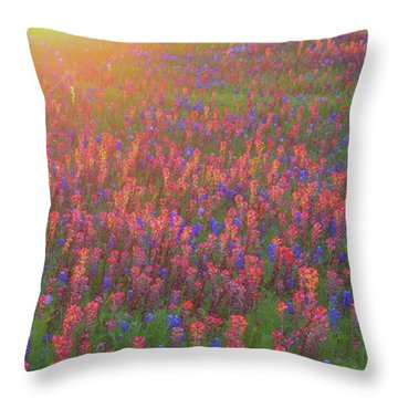 Wildflowers In Texas Throw Pillow
