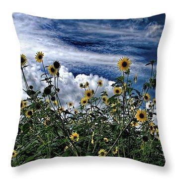 Wildflowers On The Brazos Throw Pillow