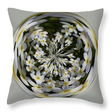 Throw Pillow featuring the photograph Wildflowers Orb by Bill Barber