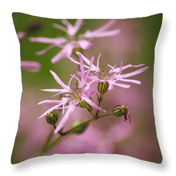 Wildflowers - Ragged Robin Throw Pillow by Christina Rollo