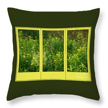 Wildflowers Through A Window Throw Pillow