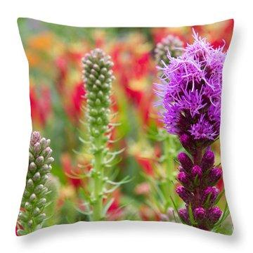 Wildlife Garden Throw Pillow