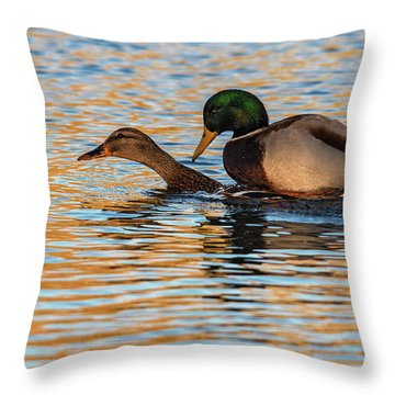 Wildlife Love Ducks  Throw Pillow
