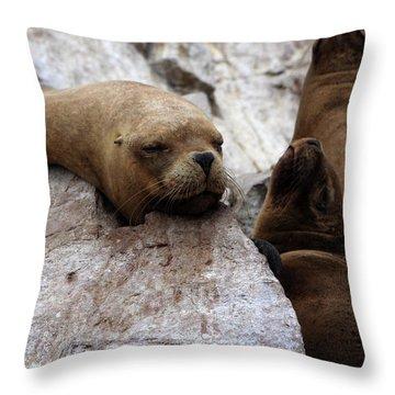 Throw Pillow featuring the photograph Wildlife Of The Ballestas Islands by Aidan Moran