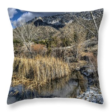 Throw Pillow featuring the photograph Wildlife Water Hole by Alan Toepfer