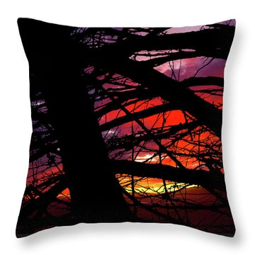 Wildlight Throw Pillow