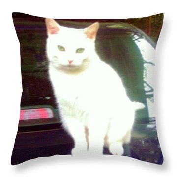 Will Wash Car For Treats Throw Pillow