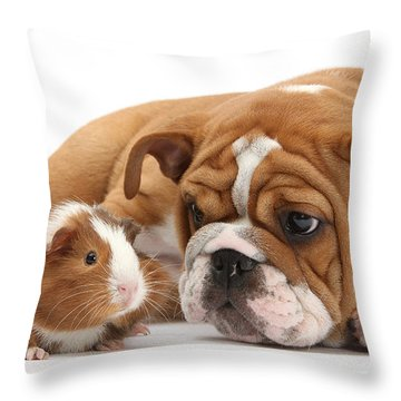 Will You Be My Friend? Throw Pillow