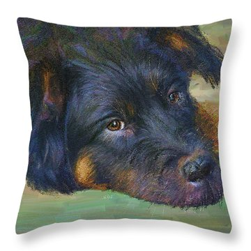 Will You Play With Me? Throw Pillow by Angela A Stanton