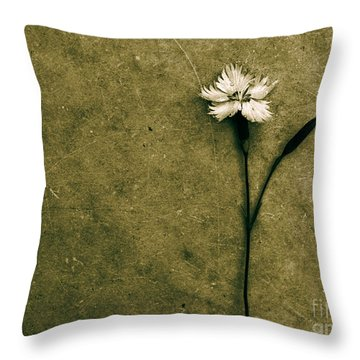 Will You Stay With Me Will You Be My Love Throw Pillow