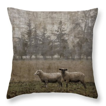 Willamette Valley Oregon Throw Pillow by Carol Leigh