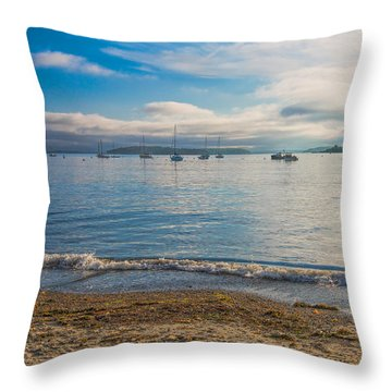 Willard Beach Throw Pillow