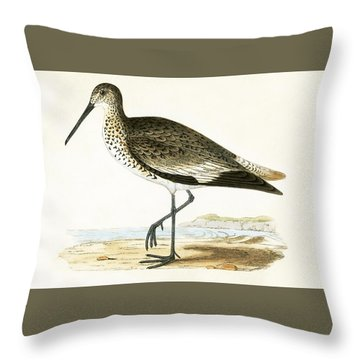 Willet Throw Pillow by English School