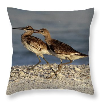 Willet Fight Throw Pillow