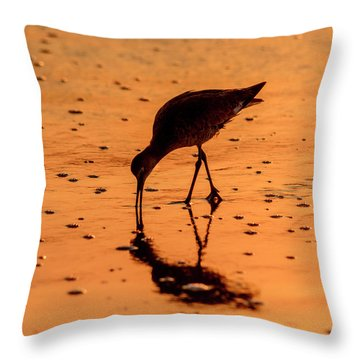 Throw Pillow featuring the photograph Willet On Sunrise Surf by Steven Sparks