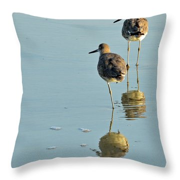 Willets On Jekyll Throw Pillow by Bruce Gourley