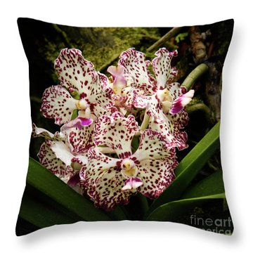 William And Catherine Throw Pillow