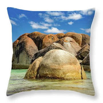 William Bay Throw Pillow