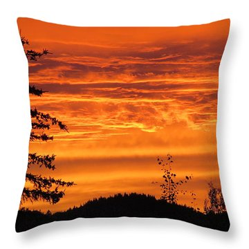 Williams Lake Throw Pillow