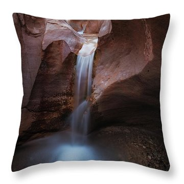 Willis Creek Fall Throw Pillow
