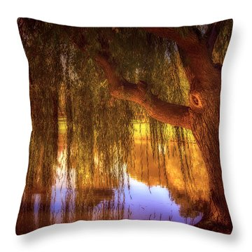 Willow Glow Throw Pillow