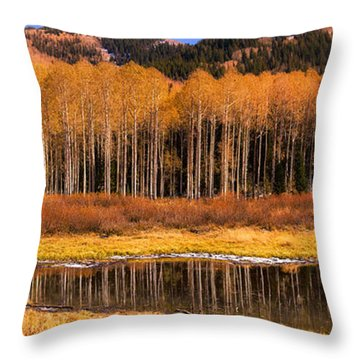 Willow Lake Moose Throw Pillow