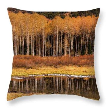 Willow Lake Pano Throw Pillow