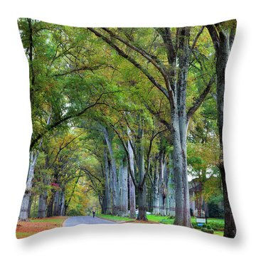 Willow Oak Trees Throw Pillow