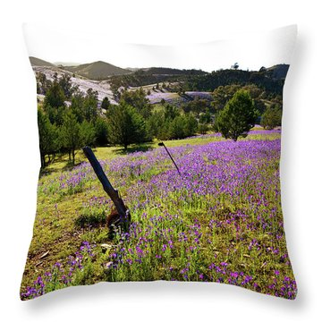 Willow Springs Station Throw Pillow by Bill Robinson