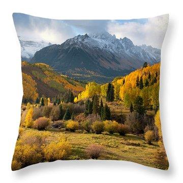 Willow Swamp Throw Pillow