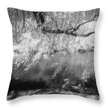 Willow Tree Lake II Throw Pillow