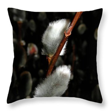 Willow Throw Pillow by Trish Tritz