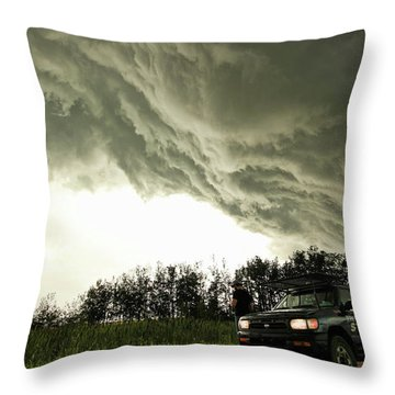 Willowbrook Beast Throw Pillow