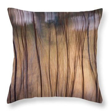 Willows In Winter Throw Pillow