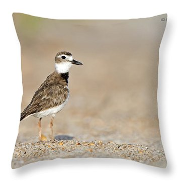 Wilson Throw Pillow