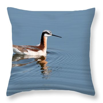 Wilson's Phalarope Throw Pillow