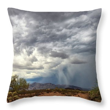 Wind And Rain Throw Pillow
