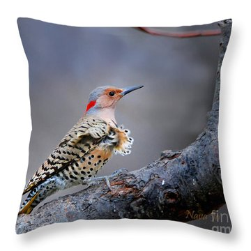Throw Pillow featuring the photograph Wind Blown Flicker by Nava Thompson