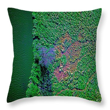 Wind Blown Marsh Tree And Water Throw Pillow