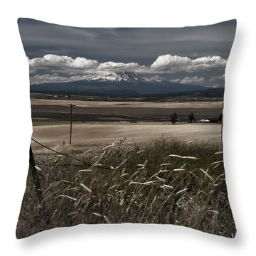Wind Blown Plains Throw Pillow