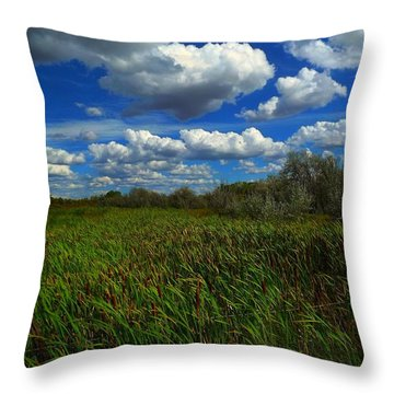 Wind In The Cattails Throw Pillow by Annie Gibbons