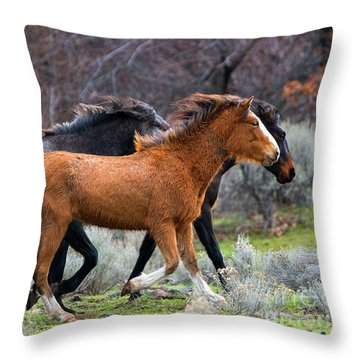 Throw Pillow featuring the photograph Wind In The Manes by Mike Dawson