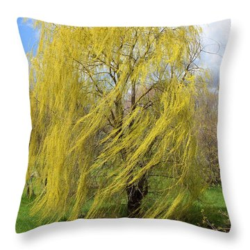 Throw Pillow featuring the photograph Wind In The Willow by Viviana  Nadowski