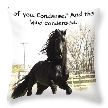 Wind In Your Mist Throw Pillow