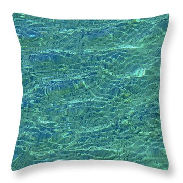 Wind Over Water Throw Pillow by Cindy Lee Longhini