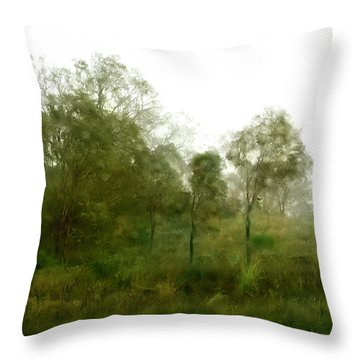 Wind Storm Throw Pillow by Linde Townsend