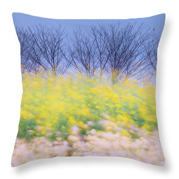 Throw Pillow featuring the photograph Wind Strokes by Awais Yaqub